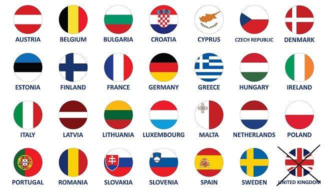 European Authorized Represntative 1